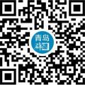 青岛网络辟谣平台小程序 二维码扫一扫